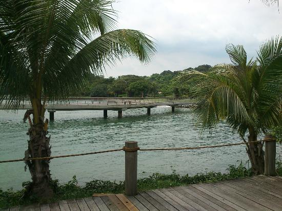 Oceanspoon Dining, Keppel Club: View from Oceanspoon - Boardwalk to Labrador Park
