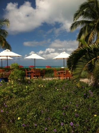 Royal West Indies Resort: by the beach front