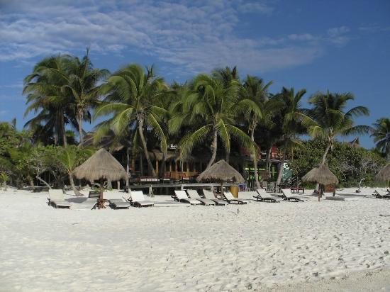 La Zebra Colibri Boutique Hotel: desde la playa hacia el restaurante