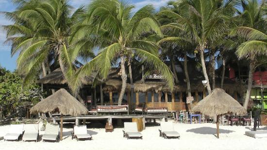 La Zebra Colibri Boutique Hotel: vista de la zebra zona comedor