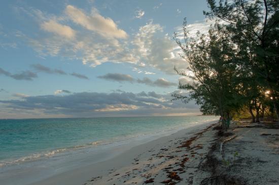 写真Hollywood Beach Suites Turks and Caicos枚