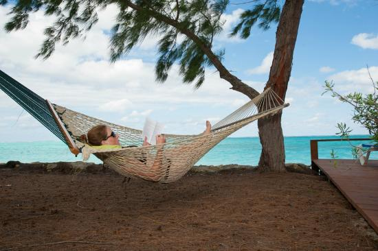 Hollywood Beach Suites Turks and Caicos: Hammocks in the shade on the beach