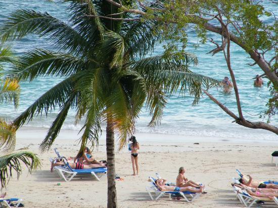 ClubHotel Riu Ocho Rios: Beach Palm