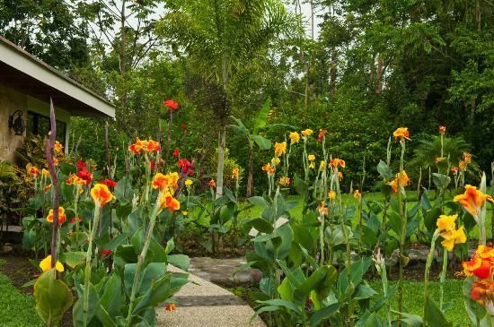 Hotel El Silencio del Campo: Flower Garden on grounds