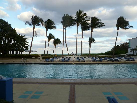 Miami Beach Resort and Spa: pool area
