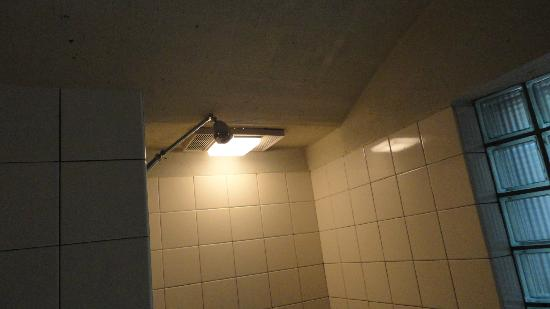 Inn at Middleton Place : Shower head in bath