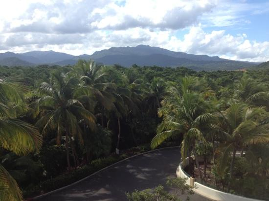 The Fajardo Inn: view from balcony