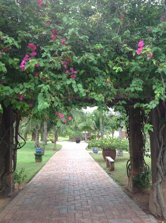 Pandanus Resort: flowered arches