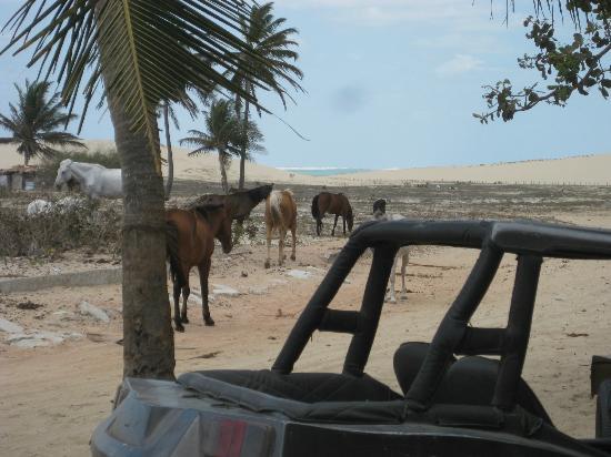 Pousada Vila Bela Vista: view from the front entrance-ahhh