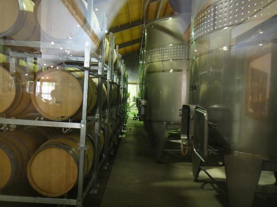 Nautilus Estate: Winery tanks and barrels