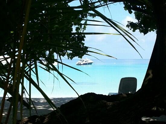Kuramathi Island Resort: le matin au petit dej