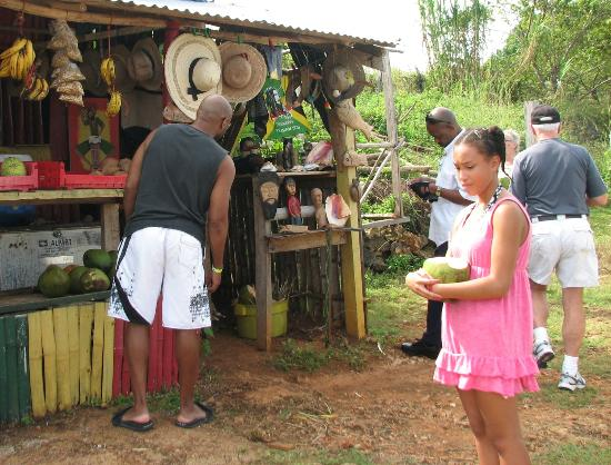 Sephy's Sunshine Tours: Roadside stop for cocnut water
