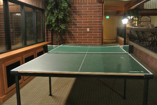 Park Plaza Resort: Game for a round of table tennis?