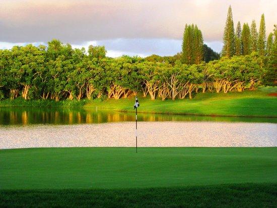Princeville Makai Golf Club : Aloha ALL, Finishing Up On The 18th