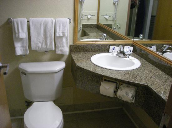 Best Western Plus Tacoma Dome Hotel: Small bathroom, no big deal