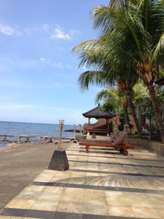 Padma Sari Beach Front Resort: great view