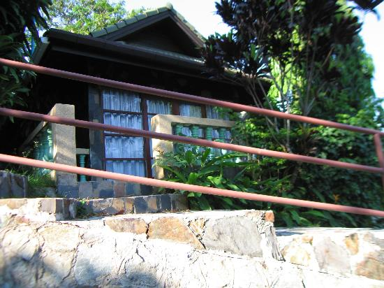 โรงแรมรอยัล คราวน์ แอนด์ ปาล์ม สปา รีสอร์ท: Дорога из бунгало по территории отеля.
