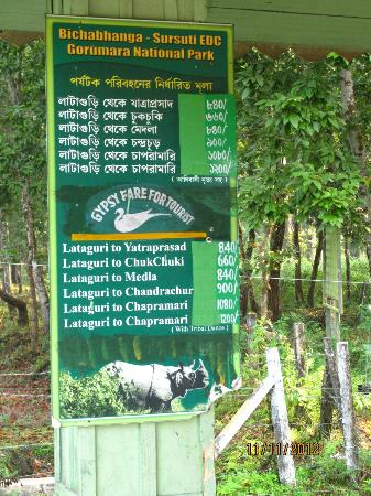 Gorumara National Park: The rates for the various safaris and watchtowers