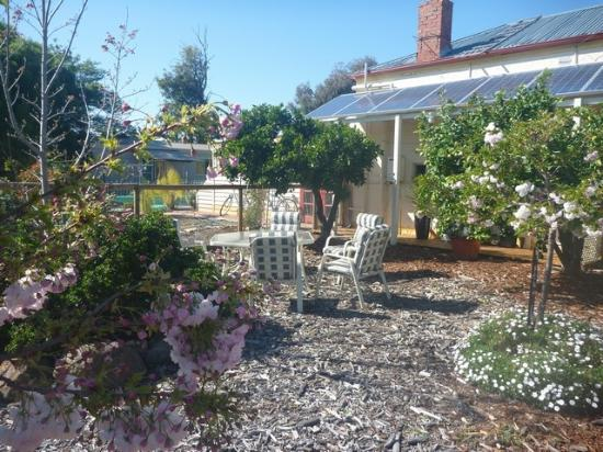 Must Love Dogs B&B & self contained cottage: secure garden for larger dogs.chandelier suite