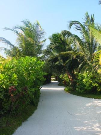 Anantara Dhigu Maldives Resort: On the island