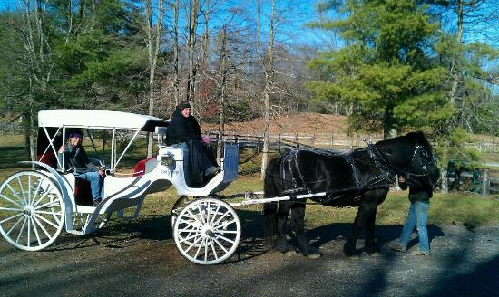 The Resort at Glade Springs : Carriage