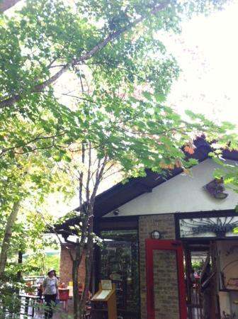 Hokuto, Japan: 八ヶ岳倶楽部のレストラン ・・・緑が多いです