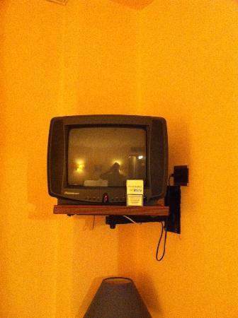 Hotel Des Alpes: TV Size