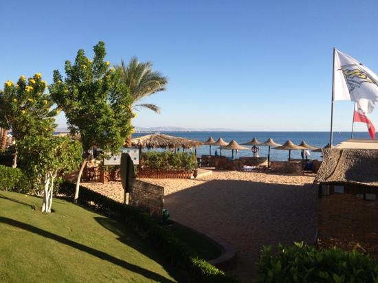 Jaz Dahabeya: gorgeous beach