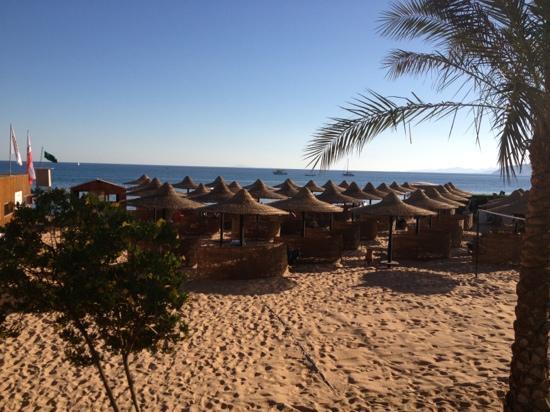 Jaz Dahabeya: beach