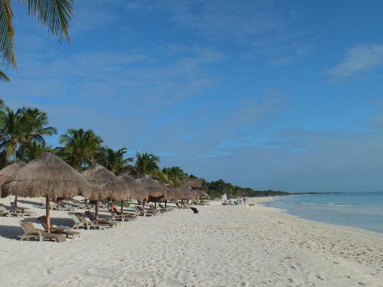 Hip Hotel Tulum: spiaggia dell'hotel