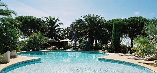 Le Spinaker: Vue panoramique sur la piscine et le jardin de pins et de palmiers