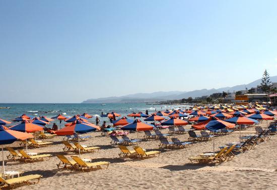 Latania Stalis Beach