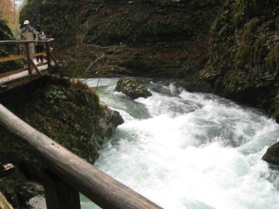 Gola di Vintgar (Soteska Vintgar): Gorge