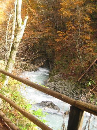 منطقة فينتاجار جورج الطبيعية: Gorge 