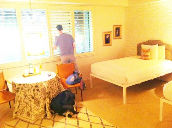 Parker Palm Springs: The beds feel a little clinical