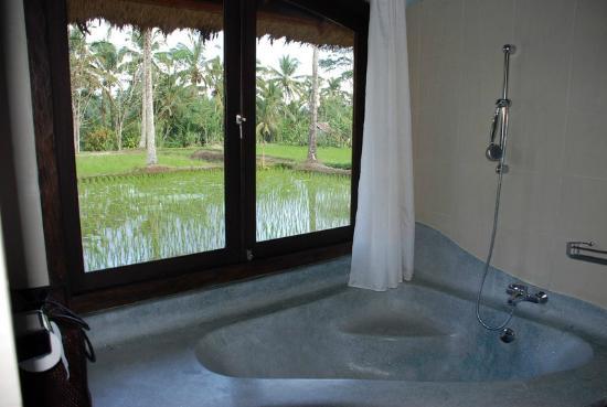 Saudara Home: chambreTirtagangga/ vue lorsque l'on prend un bain
