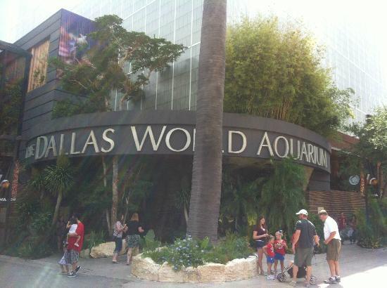 Picture Of Dallas World Aquarium Dallas