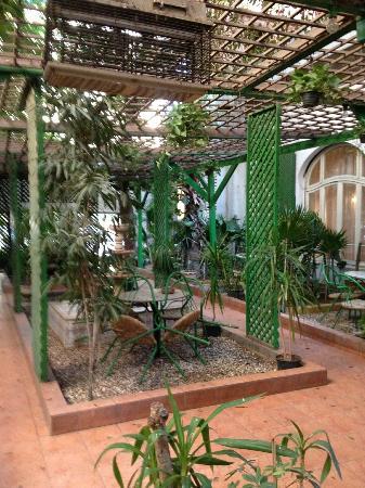 Victoria Hotel: Gartenlaube
