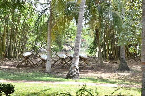 Ging Oya Lodge: Zicht op de rivier vanop onze veranda