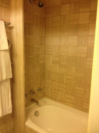 โรงแรมฮิลตันโรมแอร์พอร์ต: Shower
