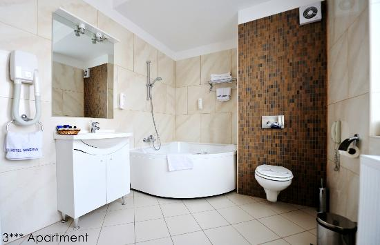 Minerva Hotel: Apartment bathroom