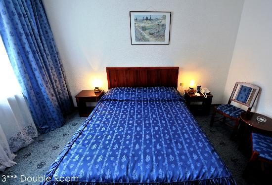 Minerva Hotel: 3 stars room