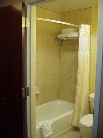 Hilton Garden Inn Winchester: Standard Bath