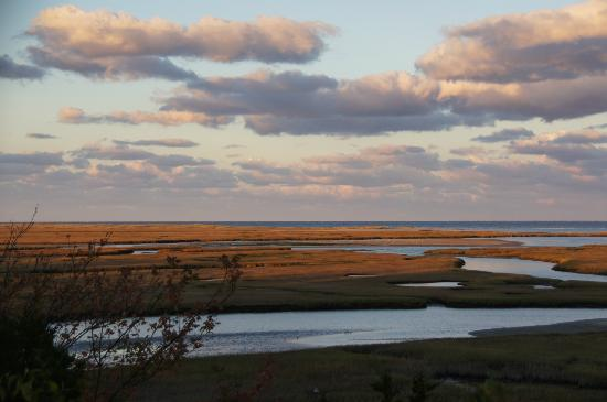 Fort Hill Rural Historic District: The Nauset salt marsh