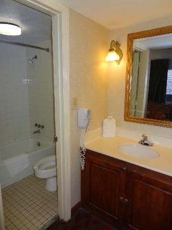 Days Inn Charleston Historic District: Bathroom