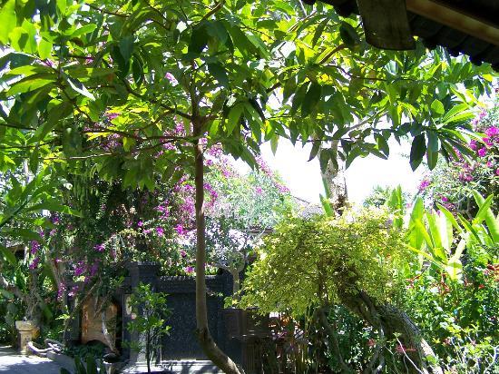 Tirta Ening Agung: nog meer tuin