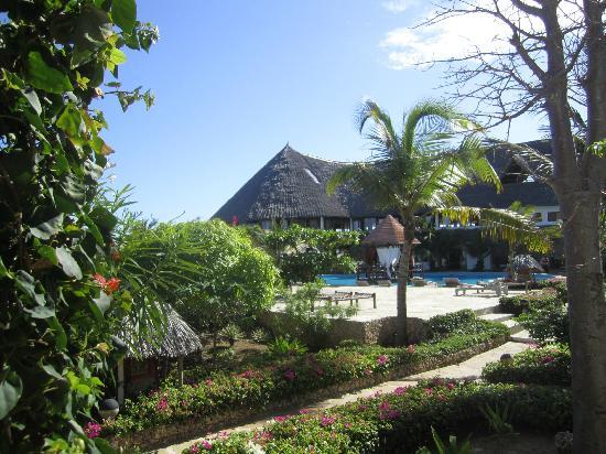 Jacaranda Beach Resort: Una delle piscina