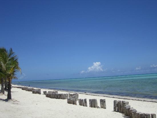 Jacaranda Beach Resort: Spiaggia fronte Jacaranda