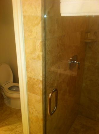 The Ritz-Carlton, Washington DC: separate shower and toliet