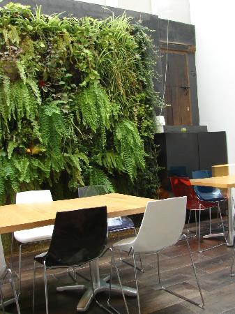 Posada Real De Esquiladores: Area abierta con jardin vertical